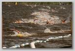 Fadd-Dombori Triatlon úszás a Tiszában