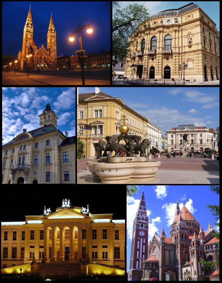 Utcakereso Szeged Terkep Utca Hazszam Es Cim Keresese